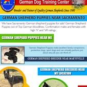German Shepherd Pups For Sale Near ME